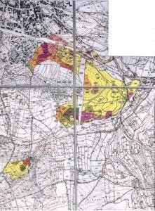 Standortkarte Veitswald
