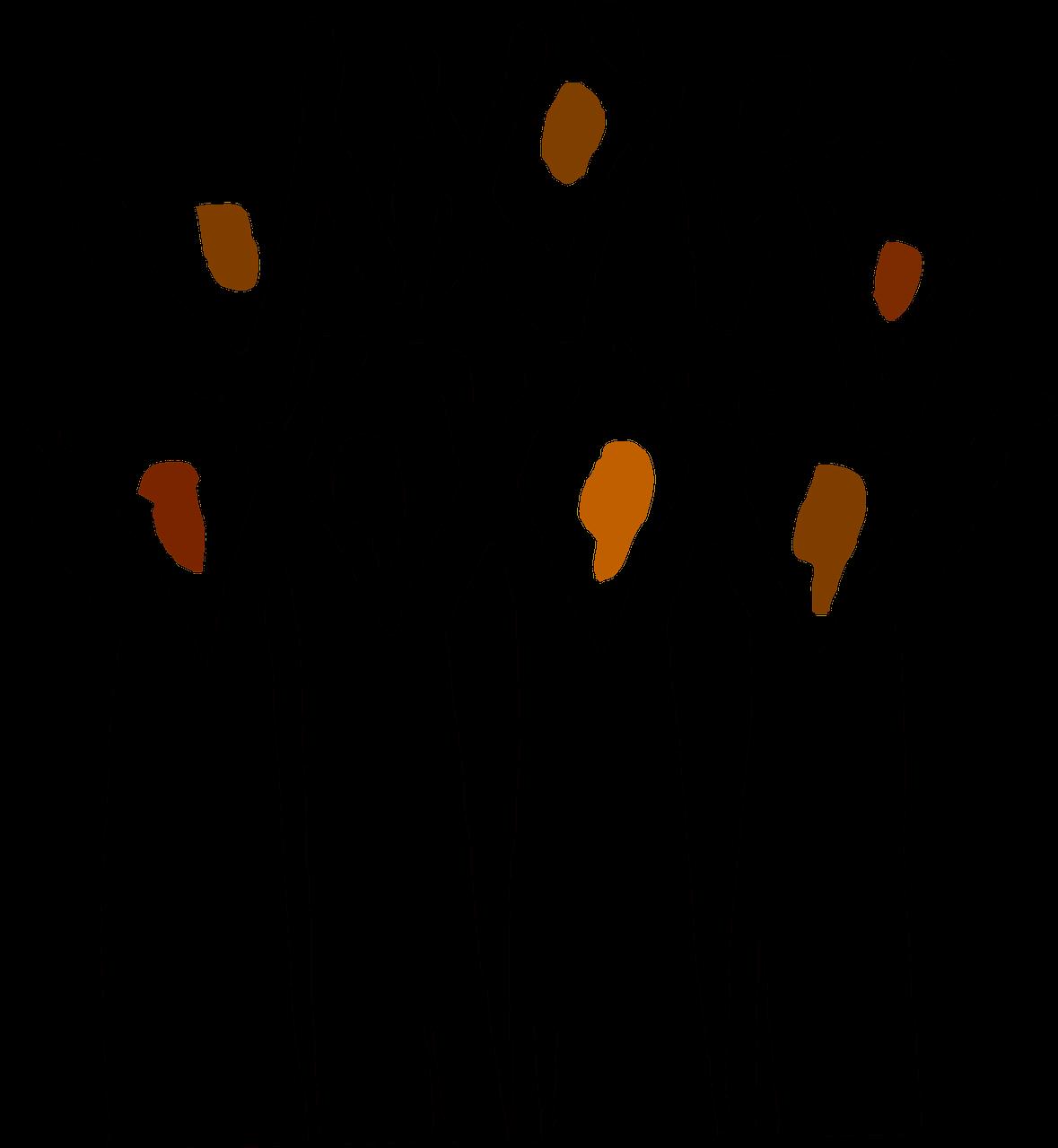 Frauensingkreis